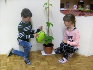 K640_Pflanzenforscher_2a_-_Foto_11